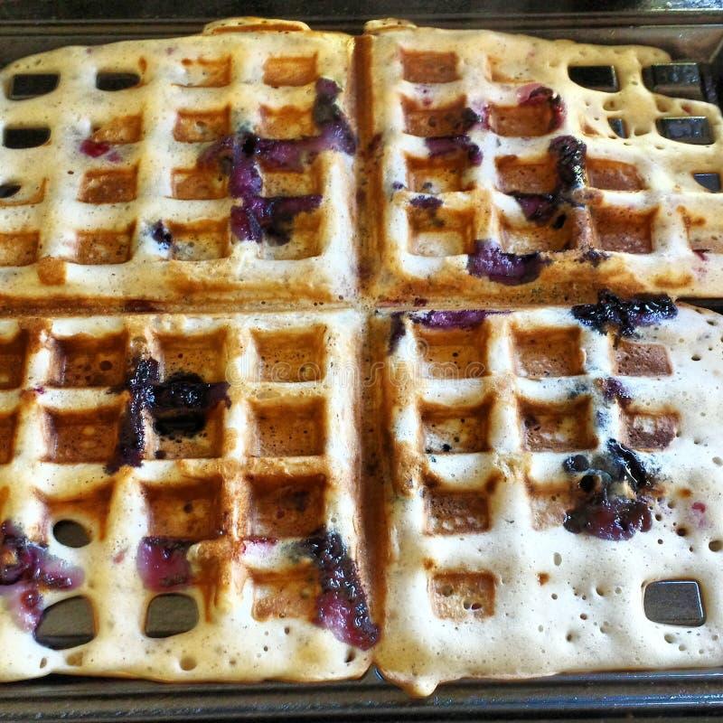 Berry good waffles royalty free stock photo