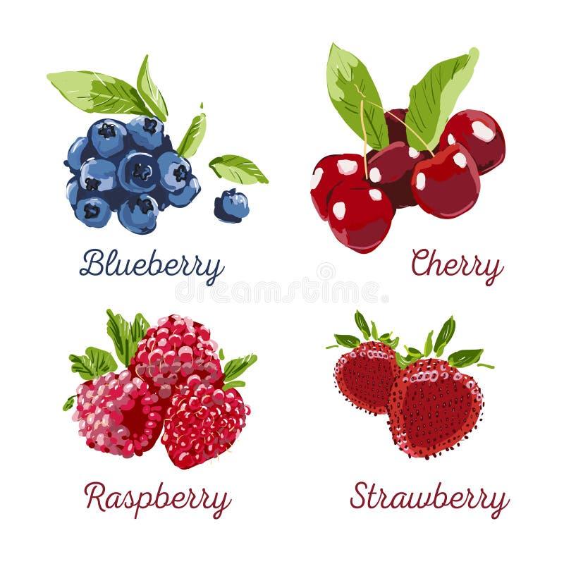 Berry Hand getrokken vectorreeks Illustratie van de bessen de kleurrijke teller Framboos, aardbei, kers, bosbes op witte achtergr stock illustratie