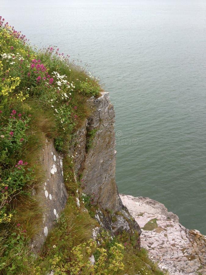 Berry Head, Brixham, Devon. Views from the stunning Berry Head just outside Brixham, Devon stock images