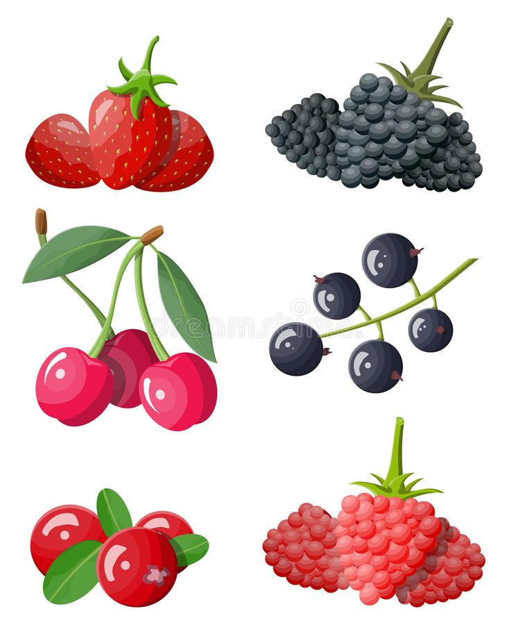 Berry icon set. Cranberry, black currant, backberry, blueberry, red currant, raspberry, strawberry and cherry.Berries with green leaves. Organic healthy food royalty free illustration