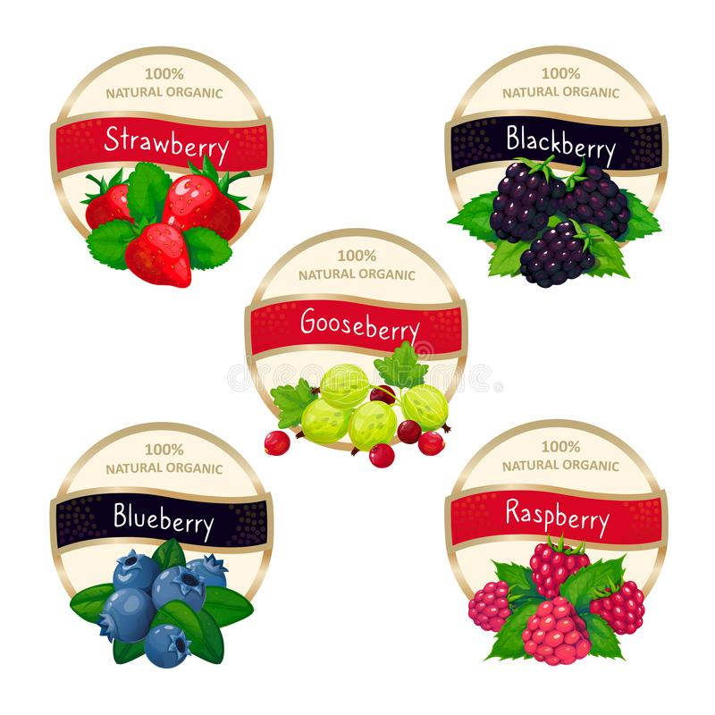 Berry jam and marmalade labels. Fresh strawberry blueberry gooseberry blackberry raspberry fruits stickers vector. Berry jam and marmalade labels. Fresh royalty free illustration