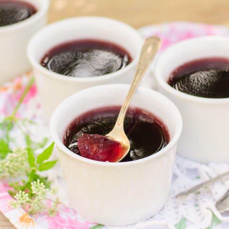Berry Jelly stock afbeelding