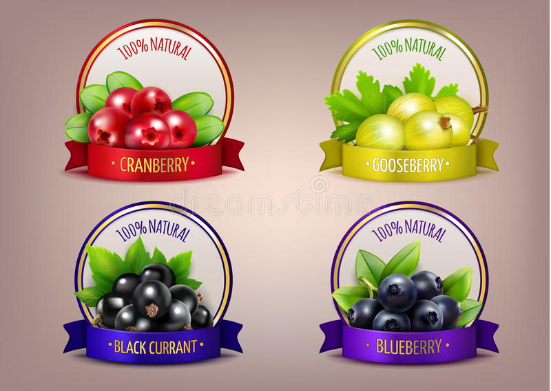 Berry Labels Realistic Eco Collection ilustração do vetor