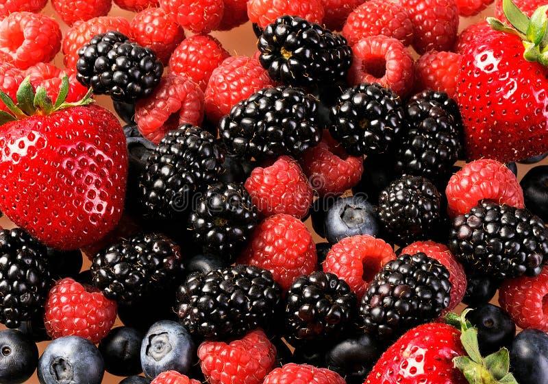 Berry mix 2 stock image