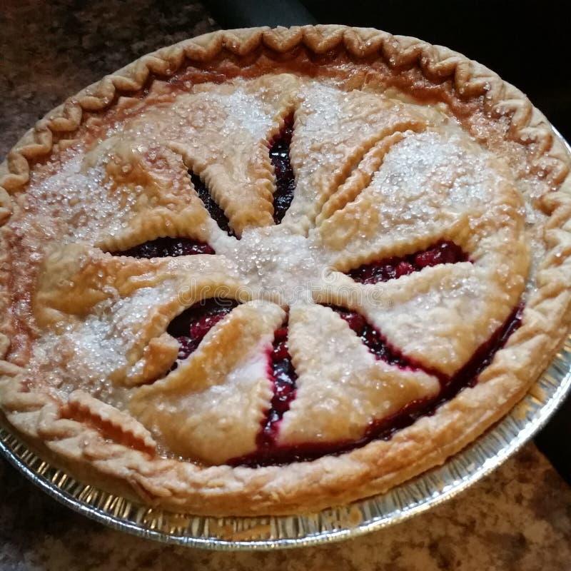 Berry Pie fotografie stock libere da diritti