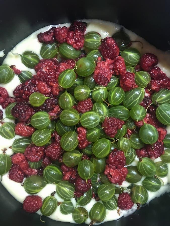 Berry Pie stock fotografie