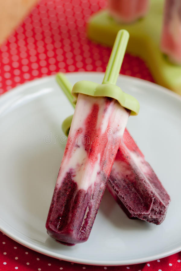 Download Berry popsicles on plate stock photo. Image of table - 20103608