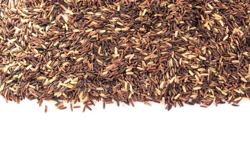 Berry Rice stock afbeelding
