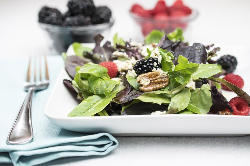 Berry Salad foto de stock royalty free