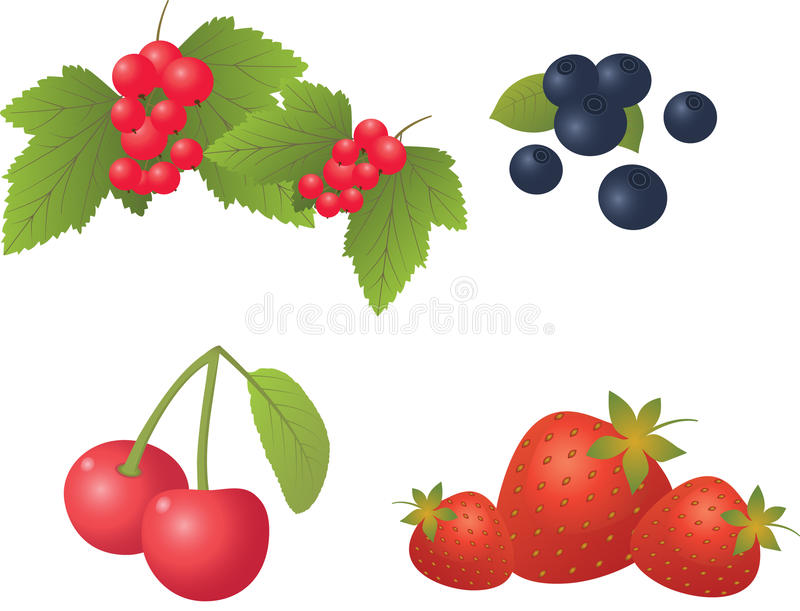 Download Berry Set On A White Background. Stock Vector - Illustration: 25347143