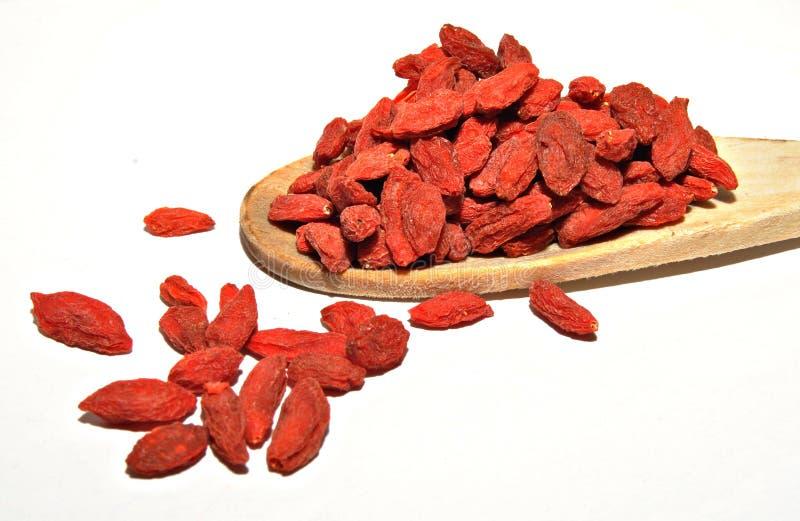 Berry spoon stock image