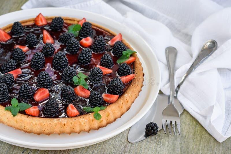 Berry Tart royalty-vrije stock foto's