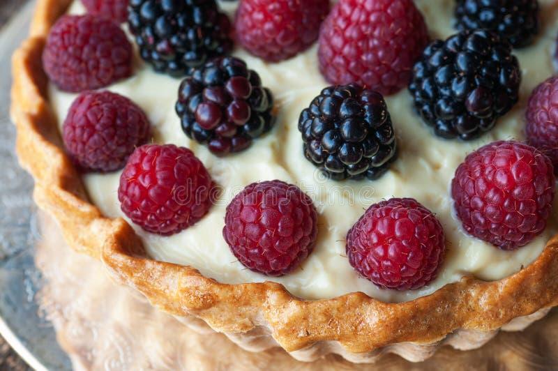 Berry Tart royalty-vrije stock foto