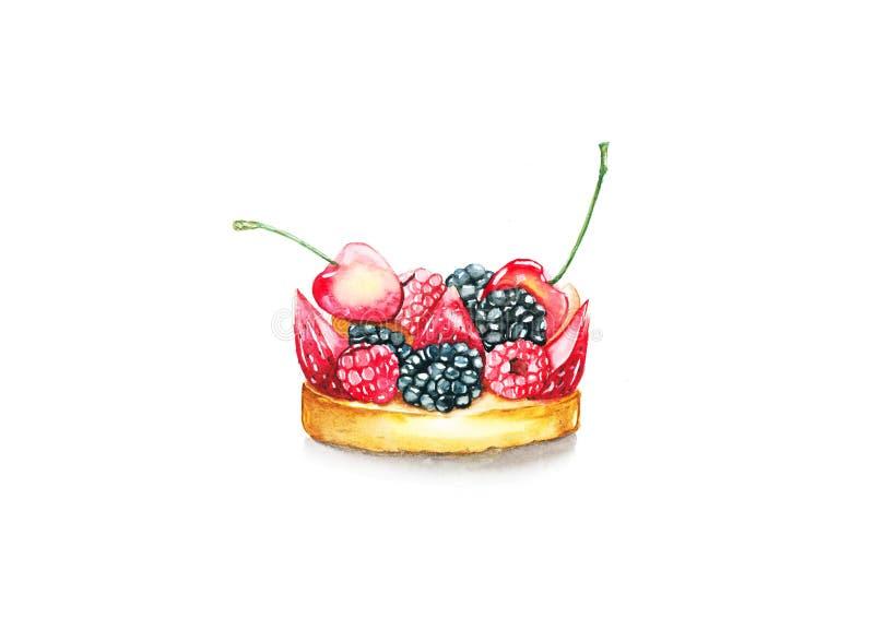 Berry Tart fotografie stock libere da diritti