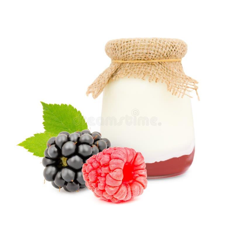 Berry Yogurt lizenzfreie stockfotos