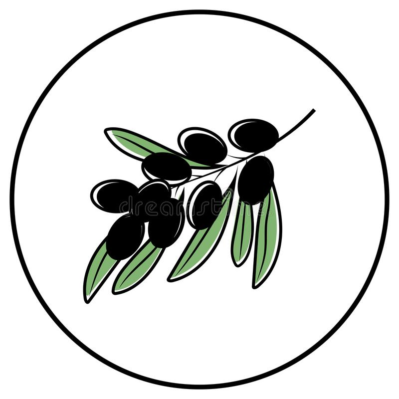 Berrys icon vector illustration vector illustration