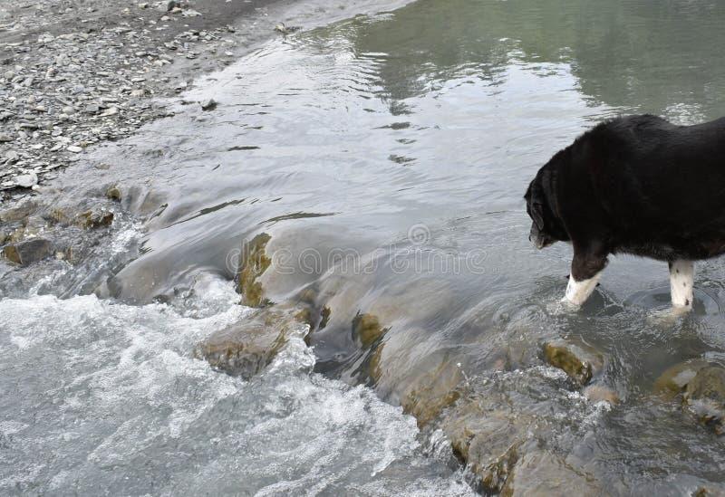Bertha zatoczka w Turnagain przepustce zdjęcie stock