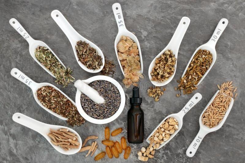 Beruhigender Herb Selection stockfotos