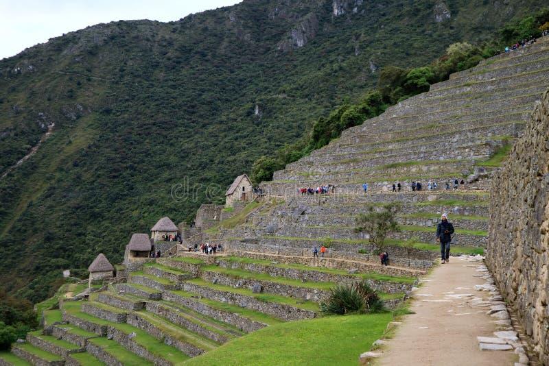 Besökare som undersöker den aechaeological platsen av Machu Picchu i ottan, Cusco region, Peru royaltyfria foton