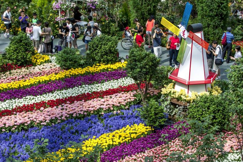 Besökare till trädgårdarna vid fjärden i Singapore beundrar den härliga tulpanskärmen arkivbild