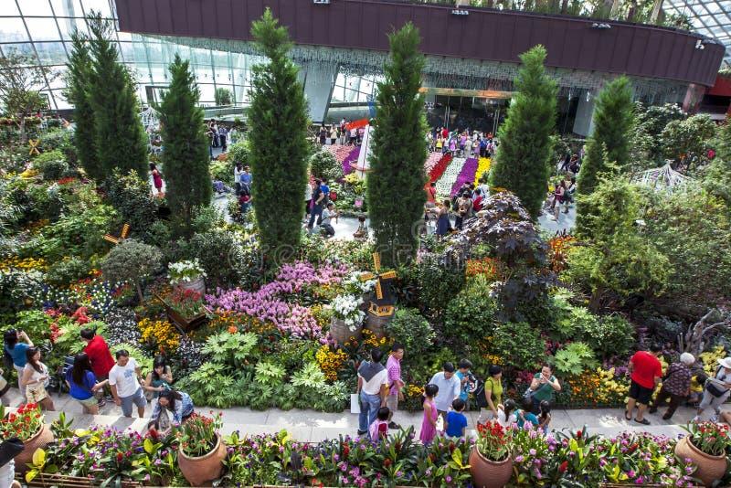 Besökare till trädgårdarna vid fjärden i Singapore beundrar den härliga växtskärmen royaltyfri fotografi