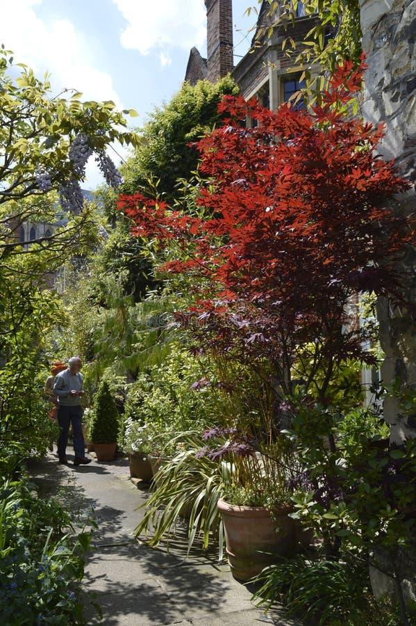 Besökare tycker om de öppna trädgårdarna för den Canterbury domkyrkan arkivbilder