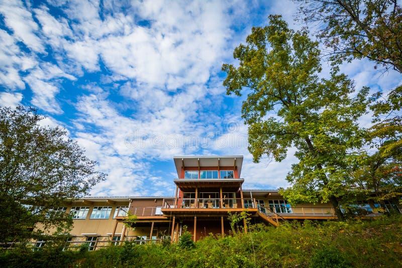 Besökaremitten på sjön Norman State Park, North Carolina royaltyfria bilder