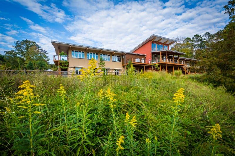 Besökaremitten på sjön Norman State Park, North Carolina arkivfoto