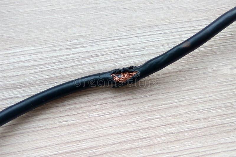 Besch?digt durch schwarze elektrische Schnur der Ratten auf Bretterbodenhintergrund Elektrisches Kabel der gef?hrlichen defekten  stockfotografie