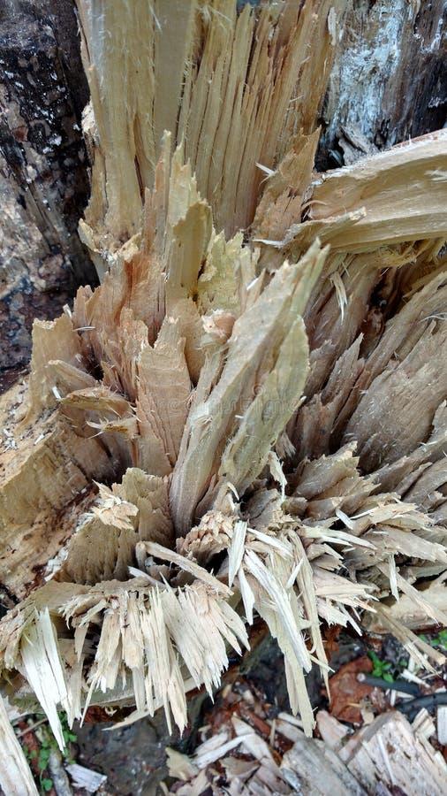 Beschadigd hout stock afbeelding