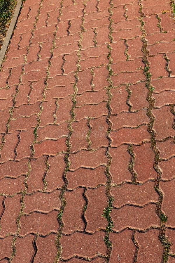 Beschadigde die asfaltweg met potholes, door freeze-thaw cycli in de winter wordt veroorzaakt slechte weg Gebroken bestratingenst royalty-vrije stock afbeeldingen