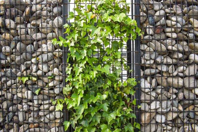 Beschaffenheit der Steinwand Der Zaun machte vom Stein Die Steinwand wird herum mit schwarzen Stahlstangen gebunden Entwurfsideen lizenzfreie stockbilder