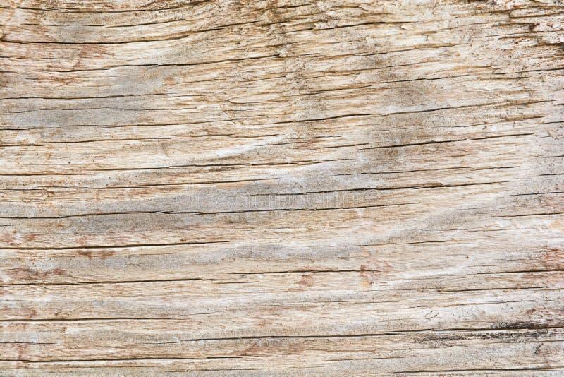 Beschaffenheit des alten verblaßten Holzes lizenzfreie stockfotos