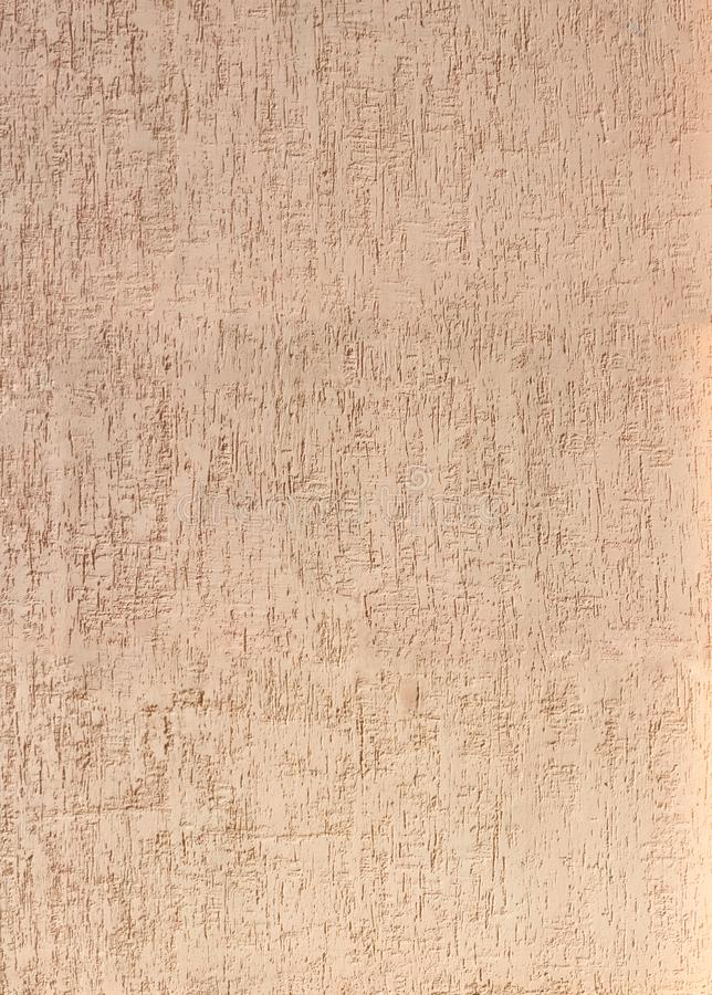 Beschaffenheit des dekorativen StuckBorkenkäfers als Hintergrund stock abbildung