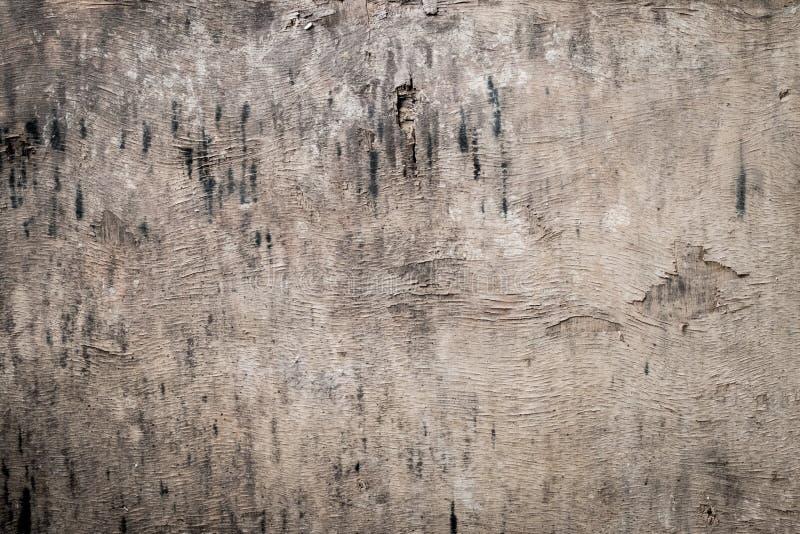 Beschaffenheit des hölzernen Gebrauches der Barke als natürlicher Hintergrund stockbilder