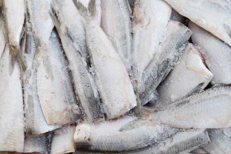 Beschaffenheit des hölzernen Gebrauches der Barke als natürlicher Hintergrund lizenzfreies stockfoto