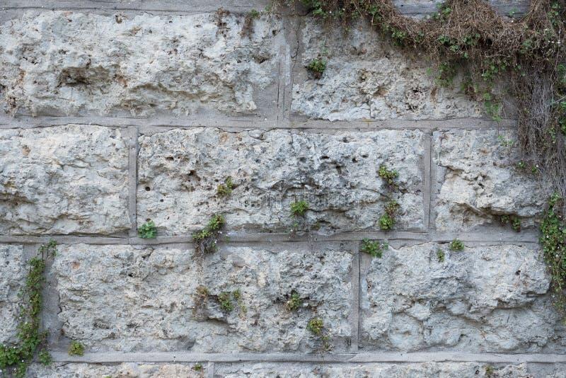 Beschaffenheit einer Wand hergestellt von den großen Felsen lizenzfreie stockbilder