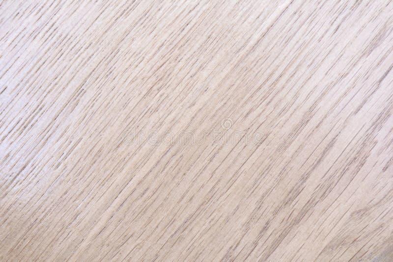 Beschaffenheit eines glatten Baums in den grauen Tönen mit einer diagonalen Anordnung für eine Zeichnung, abstrakter Hintergrund stockbilder