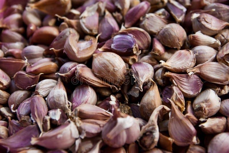 Beschaffenheit von garlics lizenzfreies stockbild