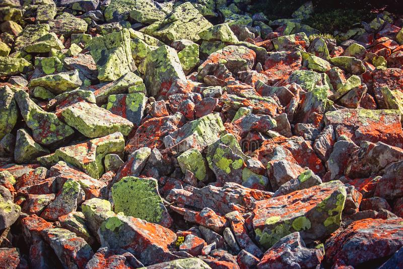 Beschaffenheit von Steinen und von Hintergrund Steine auf der Flussbank Dnie stockfotografie