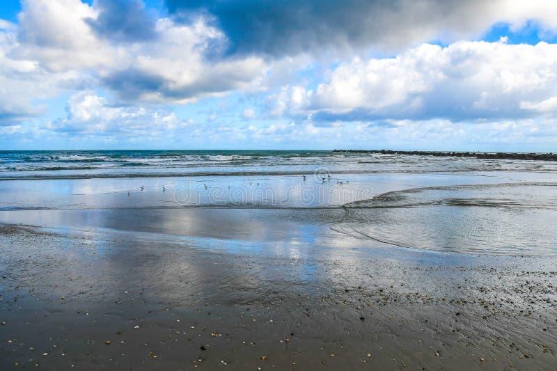 Beschaffenheiten auf dem Strand stockfotografie