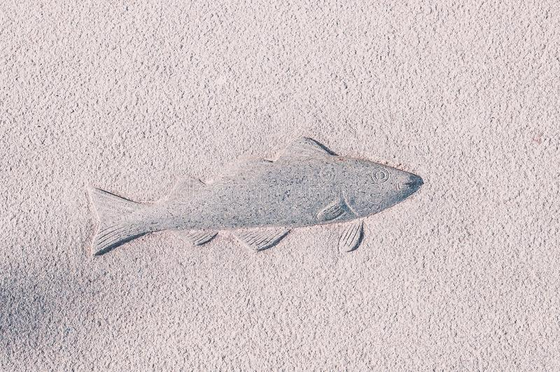 Beschaffenheitszeichnungsfische auf einer Betonmauer lizenzfreies stockbild