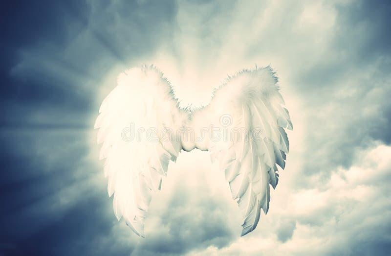 Beschermengel witte vleugels over dramatisch grijs met licht royalty-vrije stock afbeeldingen