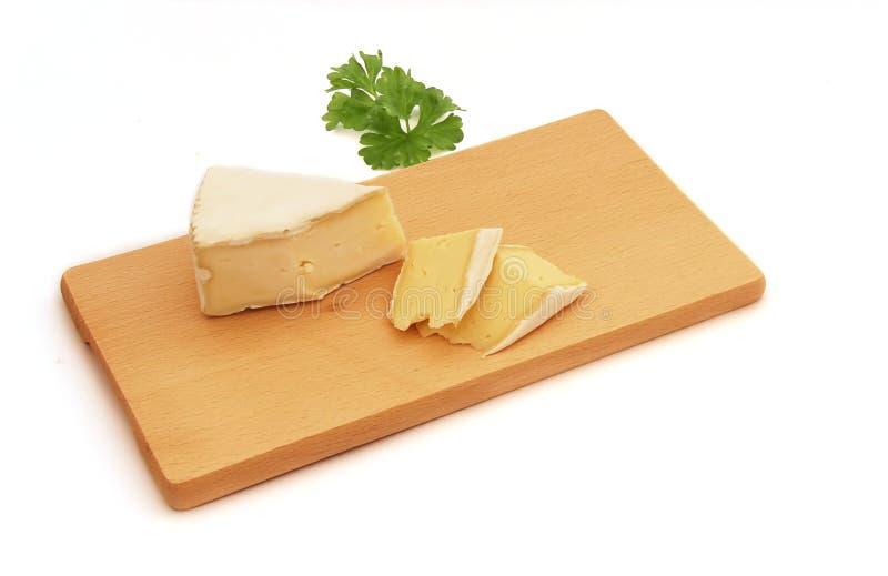 Beschimmelde kaas stock afbeelding