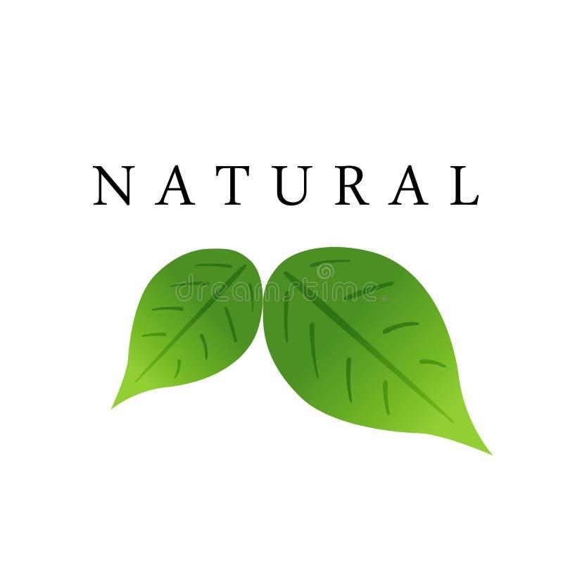 Beschriftungsnatur und grüne Blätter reflektieren Ökologieemblemvektor stock abbildung