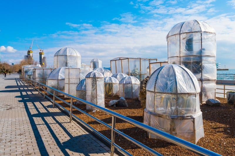 Beschutte tropische installaties op waterkant in Baku Februari in de zuidelijke stad royalty-vrije stock foto
