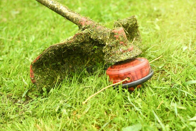 Beskärareslutet mejar upp gräset med en gräsklippare Arbeta i trädgården med en närbild för borsteskärare Gräsmattaomsorg med bor royaltyfria foton