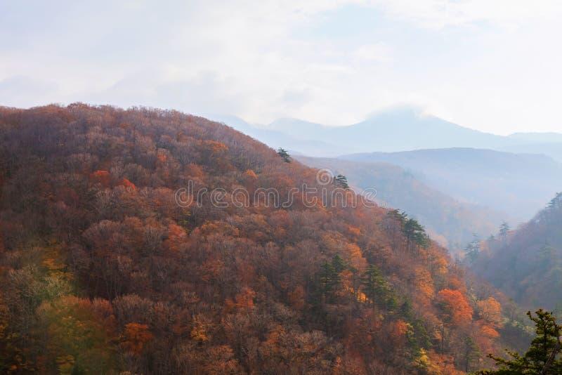 Beskåda berget av den Jogakura klyftan i höstsäsong, Aomori, Japan royaltyfri foto