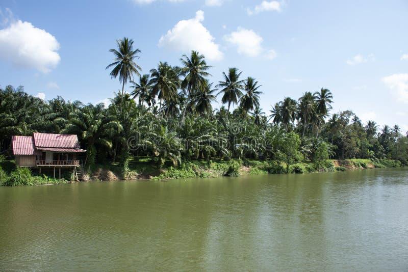 Beskåda landskapet och vinka flödande vatten av den Sawi floden på det Sawi området i Chumphon, Thailand arkivbilder