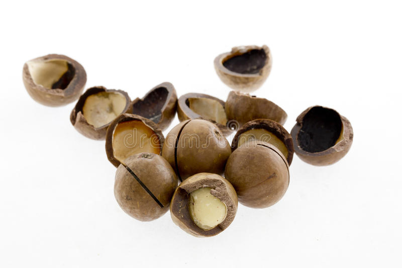 Besköt och unshelled macadamiamuttrar på vit bakgrund arkivbild
